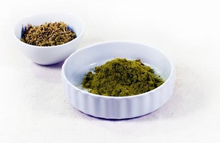 Gemahlene Olivenblätter haben eine helle, olivgrüne Farbe