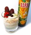 Power-Joghurt für einen gesunden und sehr geschmackvollen Start in den Tag